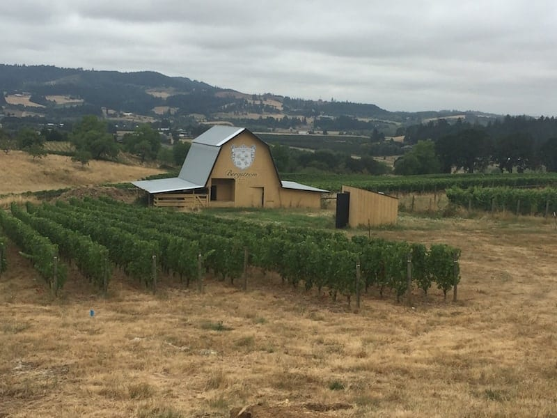 Bergstrom Winery: This four day itinerary will keep you focused and will provide some of the top tasting experiences at wineries in Willamette Valley - Oregon's wine country.