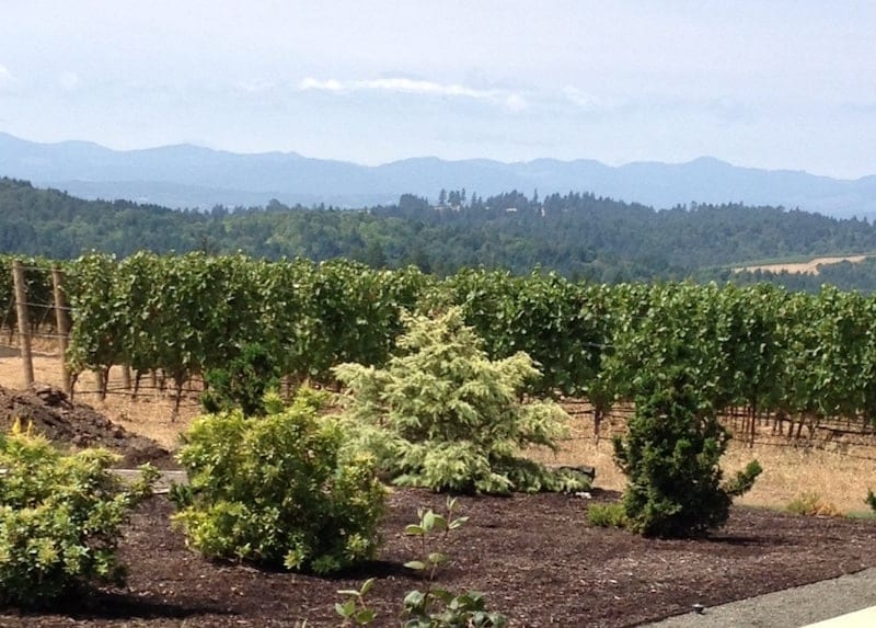 Eminent Domaine: This four day itinerary will keep you focused and will provide some of the top tasting experiences at wineries in Willamette Valley - Oregon's wine country.