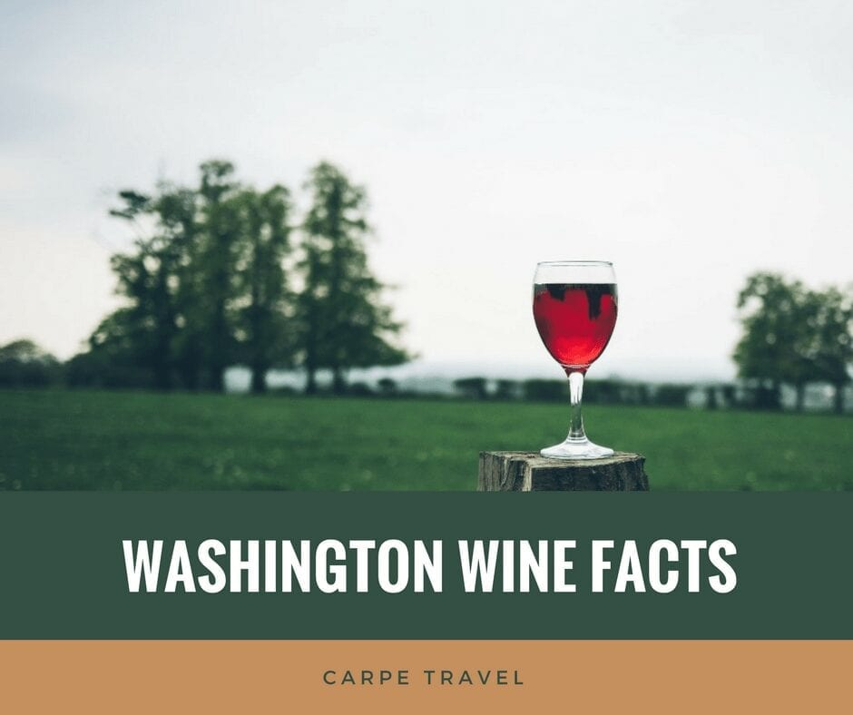 What every wine lover should know about Washington wine & its history