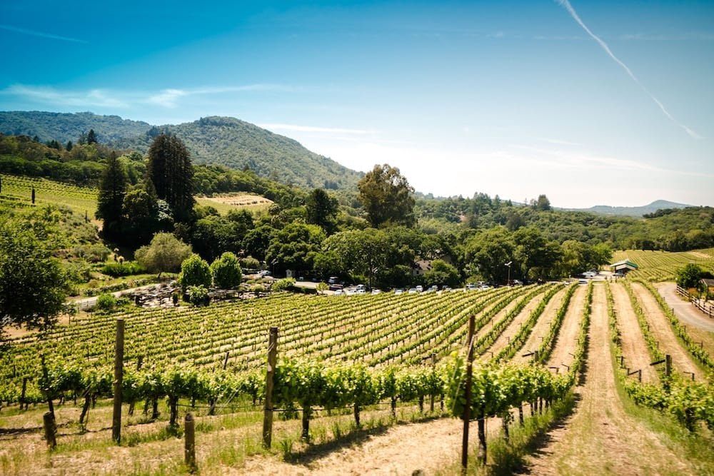 Best Things to Do in Sonoma County with Tweens and Teens