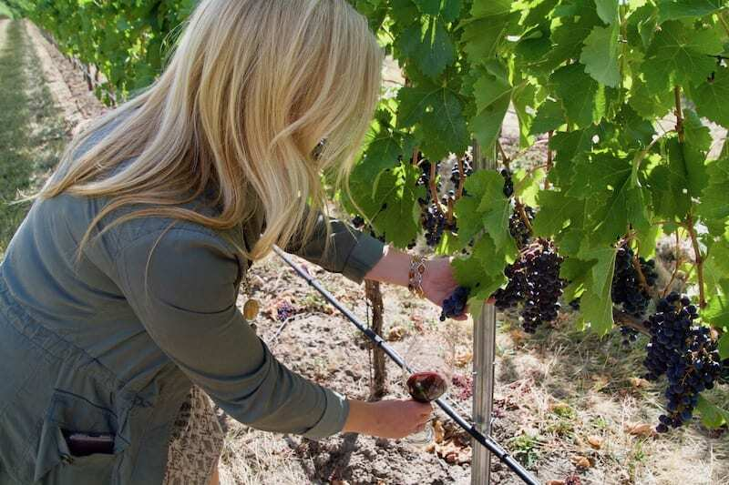 Wine tasting in Walla Walla - creating the perfect day