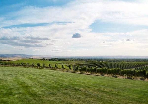 Walla Walla Wine Country is a world renowned region not to miss.