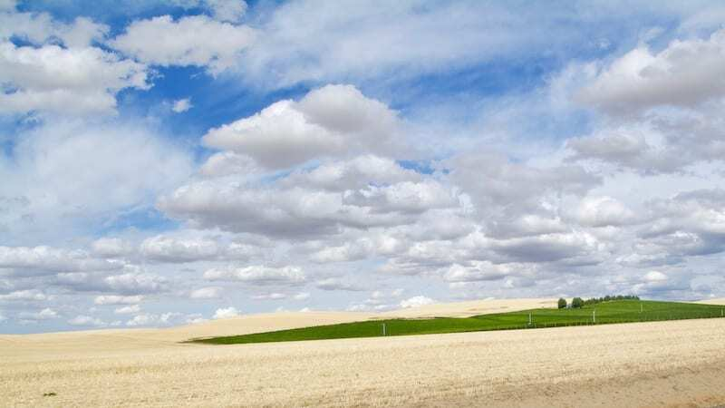 Walla Walla wine country is a world renowned wine region not to miss.