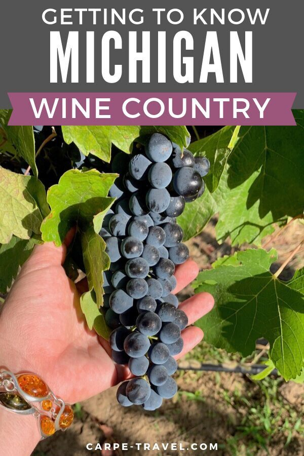 The utlimate guide to visiting Michigan wine country