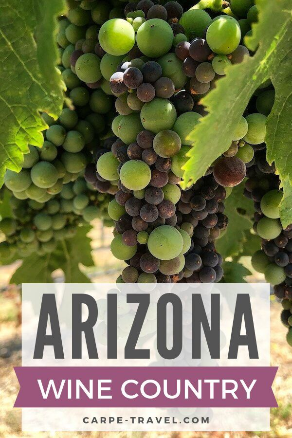 The ultimate guide to sipping through the Arizona wine country