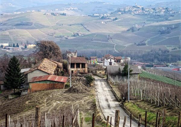 what is piedmot italy known for