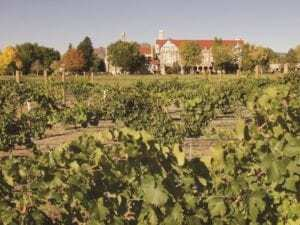 The Winery at Holy Cross, Colorado Wineries
