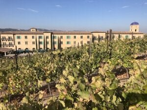 Where to Stay in Paso Robles - Allegretto vineyard