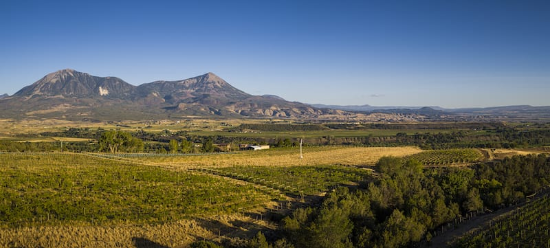 Colorado wineries in Paonia